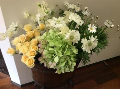 Avalonのお花たち